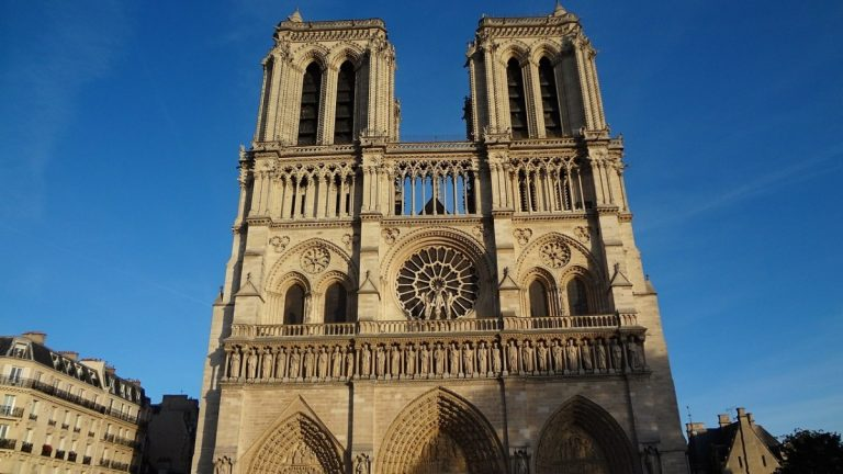 Visita Notre Dame con una Guida